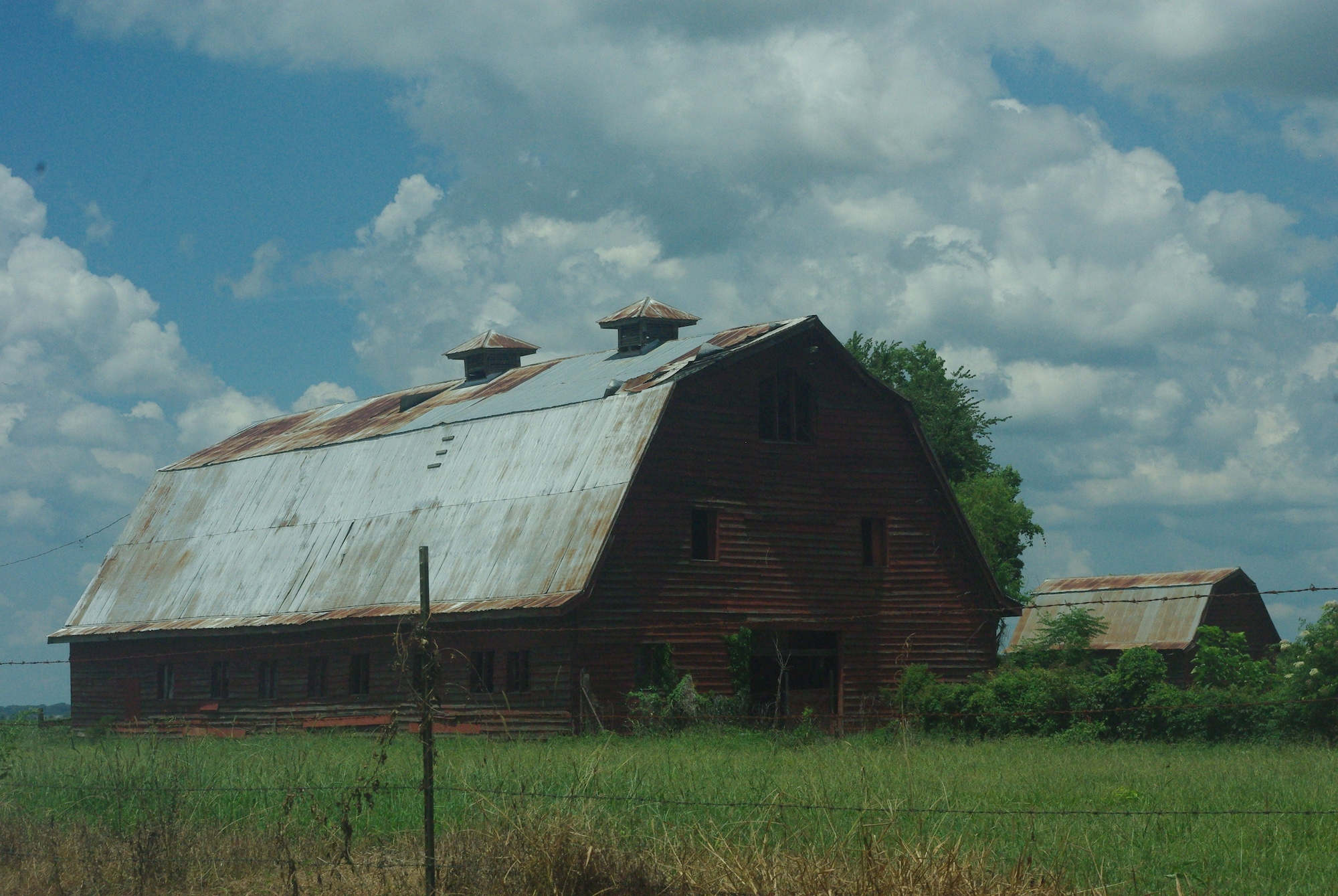 Les restes des bâtiments de la plantation