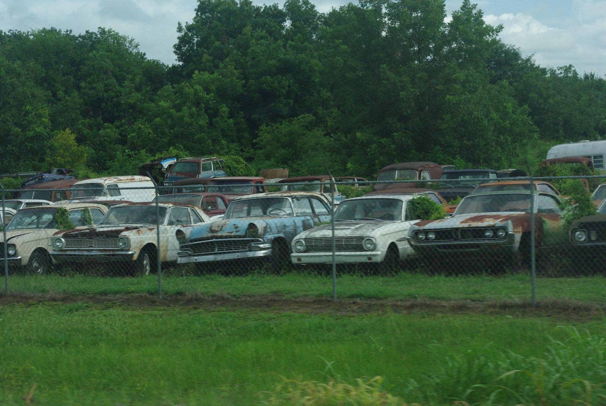 Un magnifique casse auto avec des voitures vintage