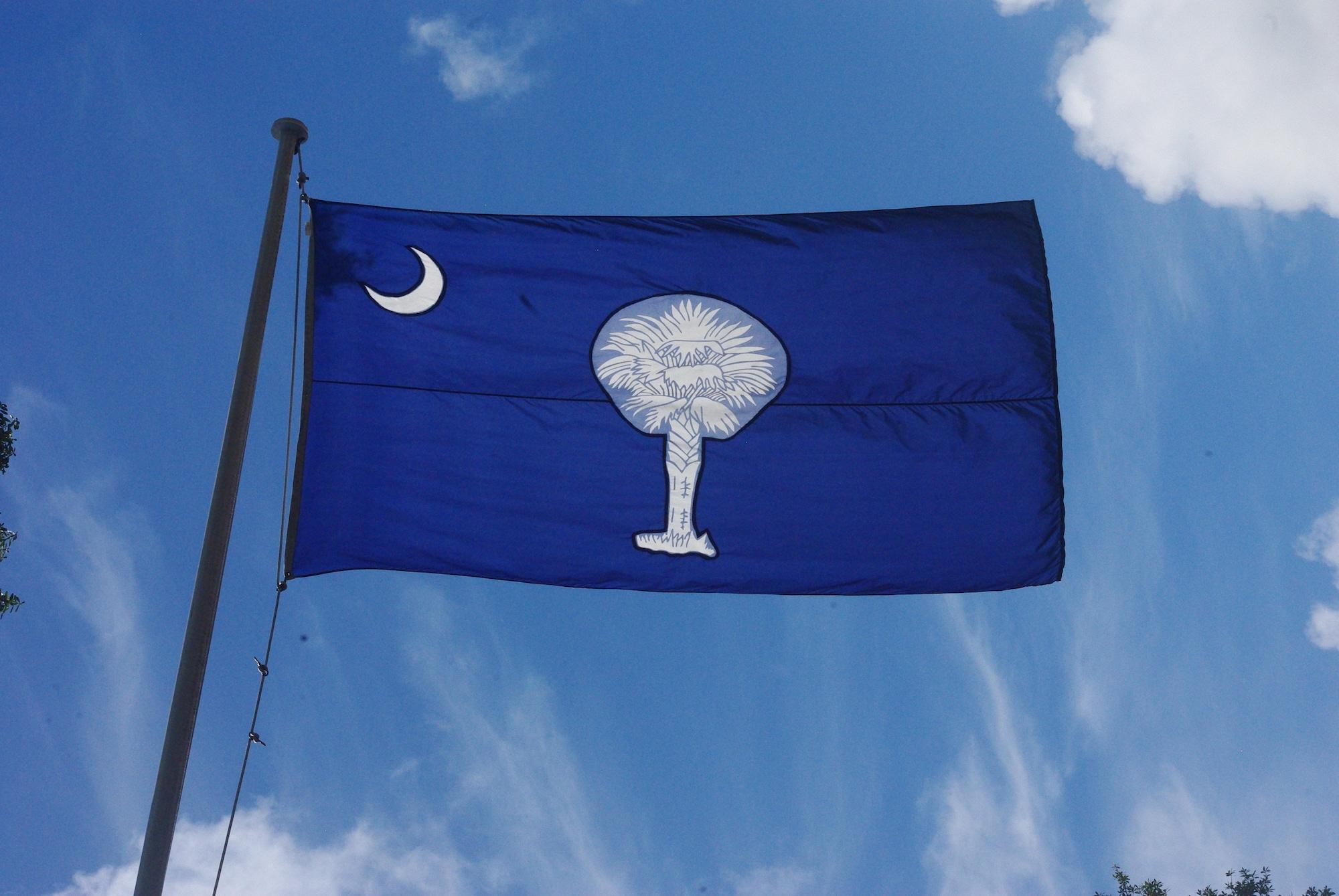 Le drapeau de la Caroline du sud inclut un palmier. Le bois un peu élastique a autrefois renvoyé les boulets anglais. Ça méritait bien un petit hommage
